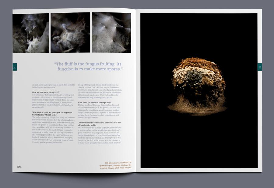 iota magazine afterlife article spread 02