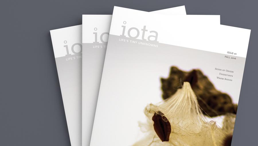 iota magazine cover
