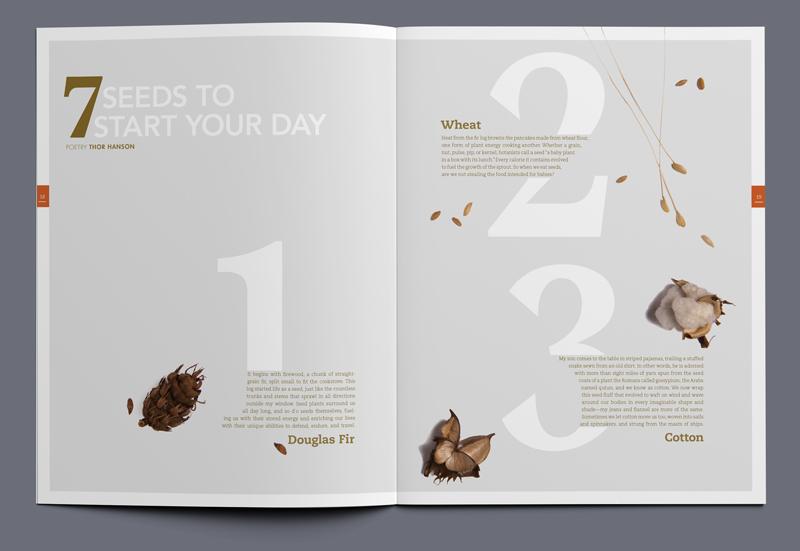 iota magazine seeds article spread 01
