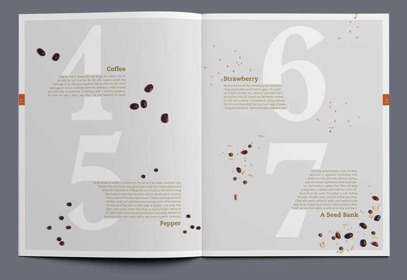 iota magazine seeds article spread 02