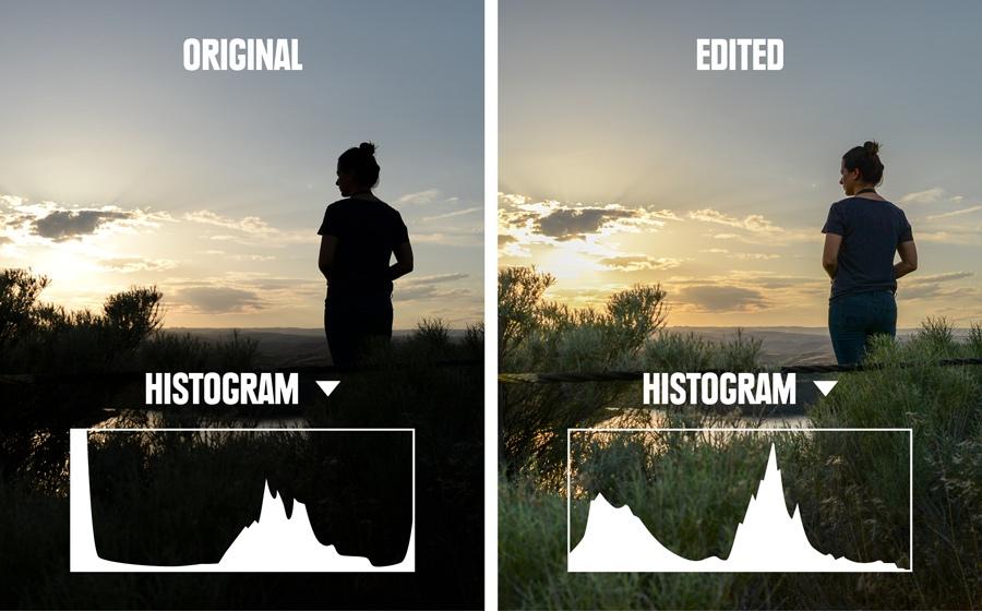 whiting_051618_0124_histogram_comparison2